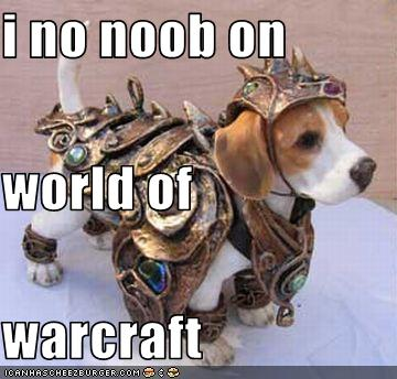 Image result for noob wow